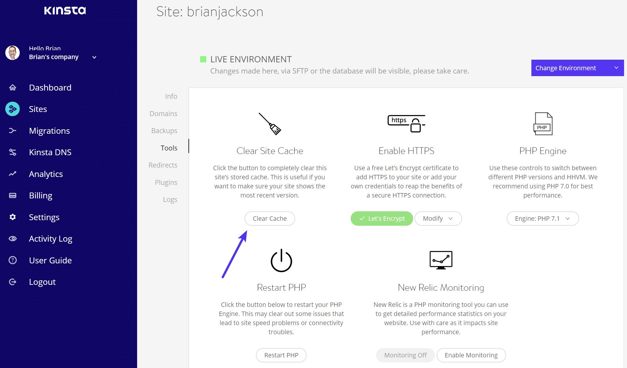 Lösche WordPress Cache bei MyKinsta