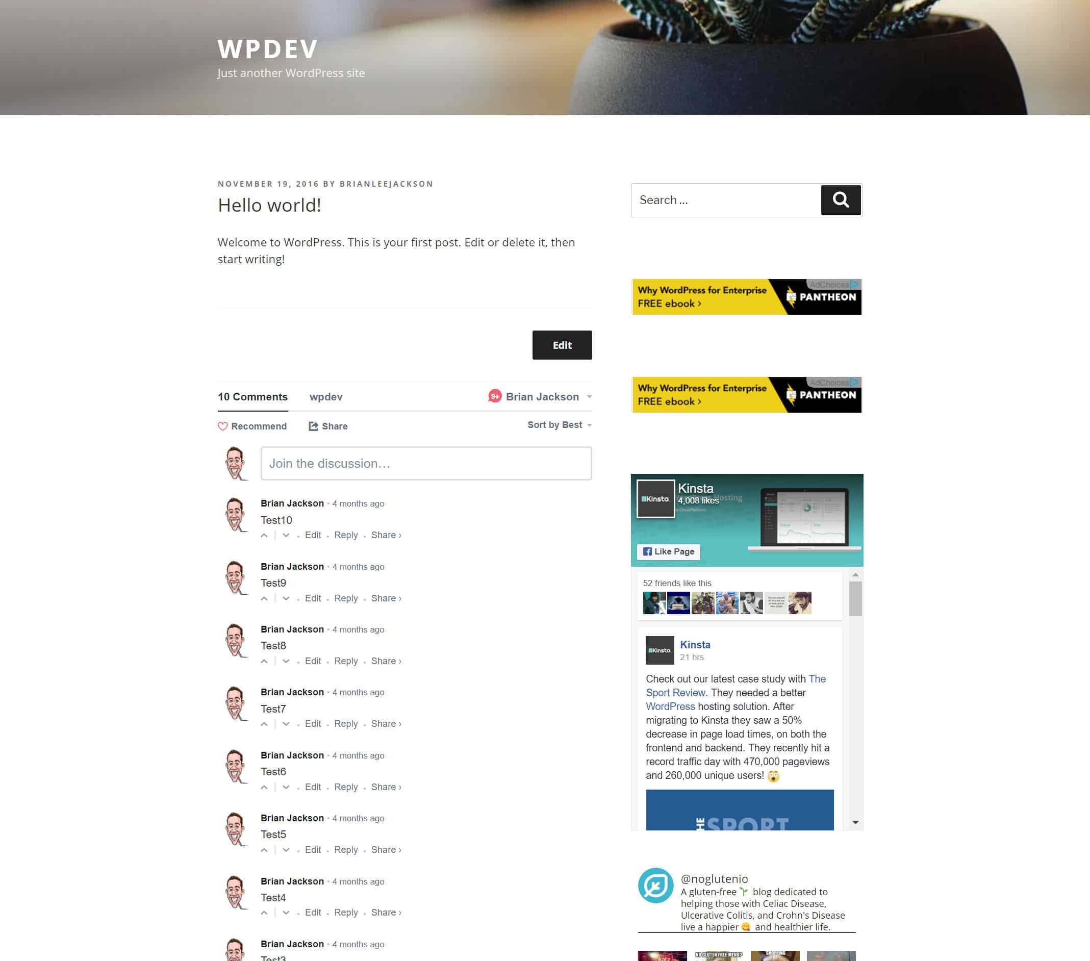 WordPress Testfeld