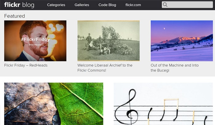 flickr blog wordpress seiten