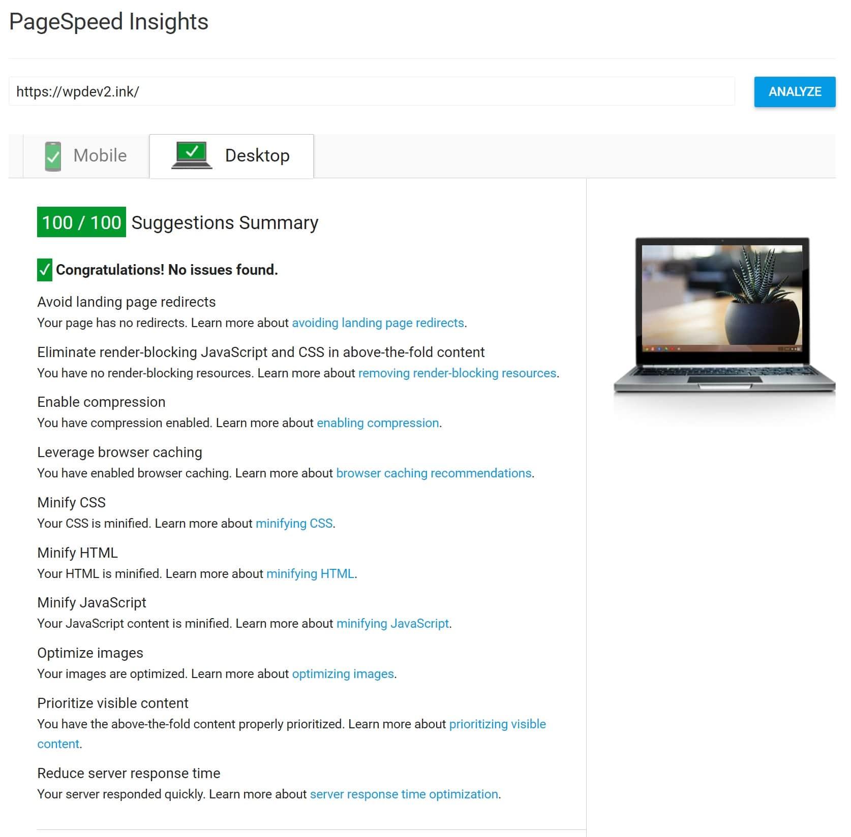 100/100 Google PageSpeed Insights Score