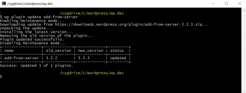 WP-CLI aktualisiert WordPress Plugin manuell