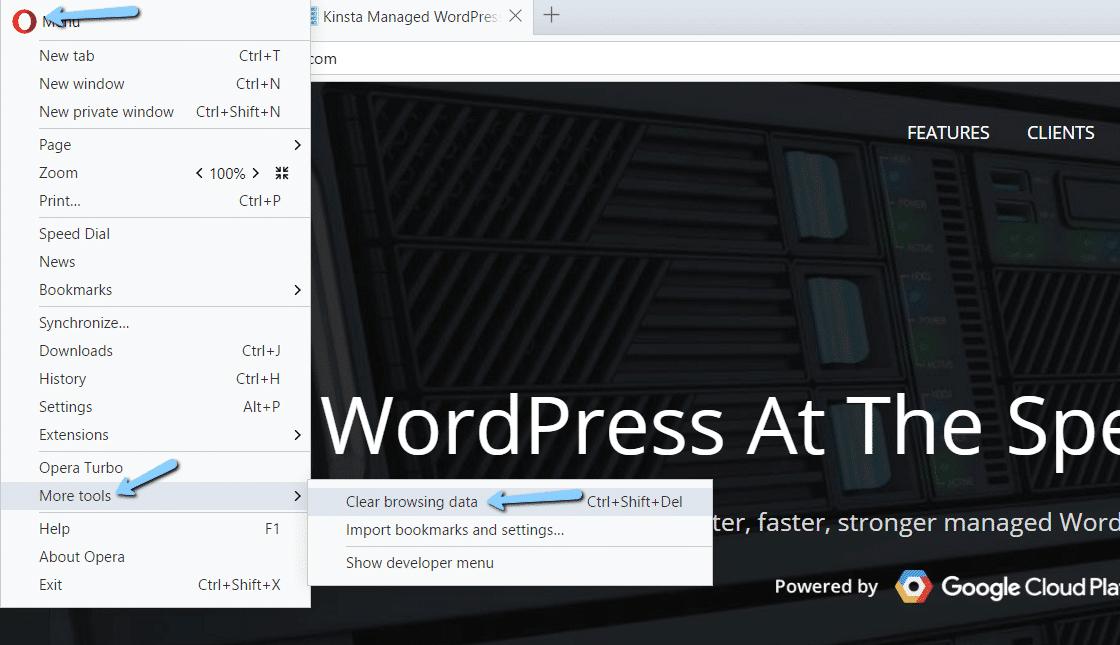 Opera Löschen der Browserdaten