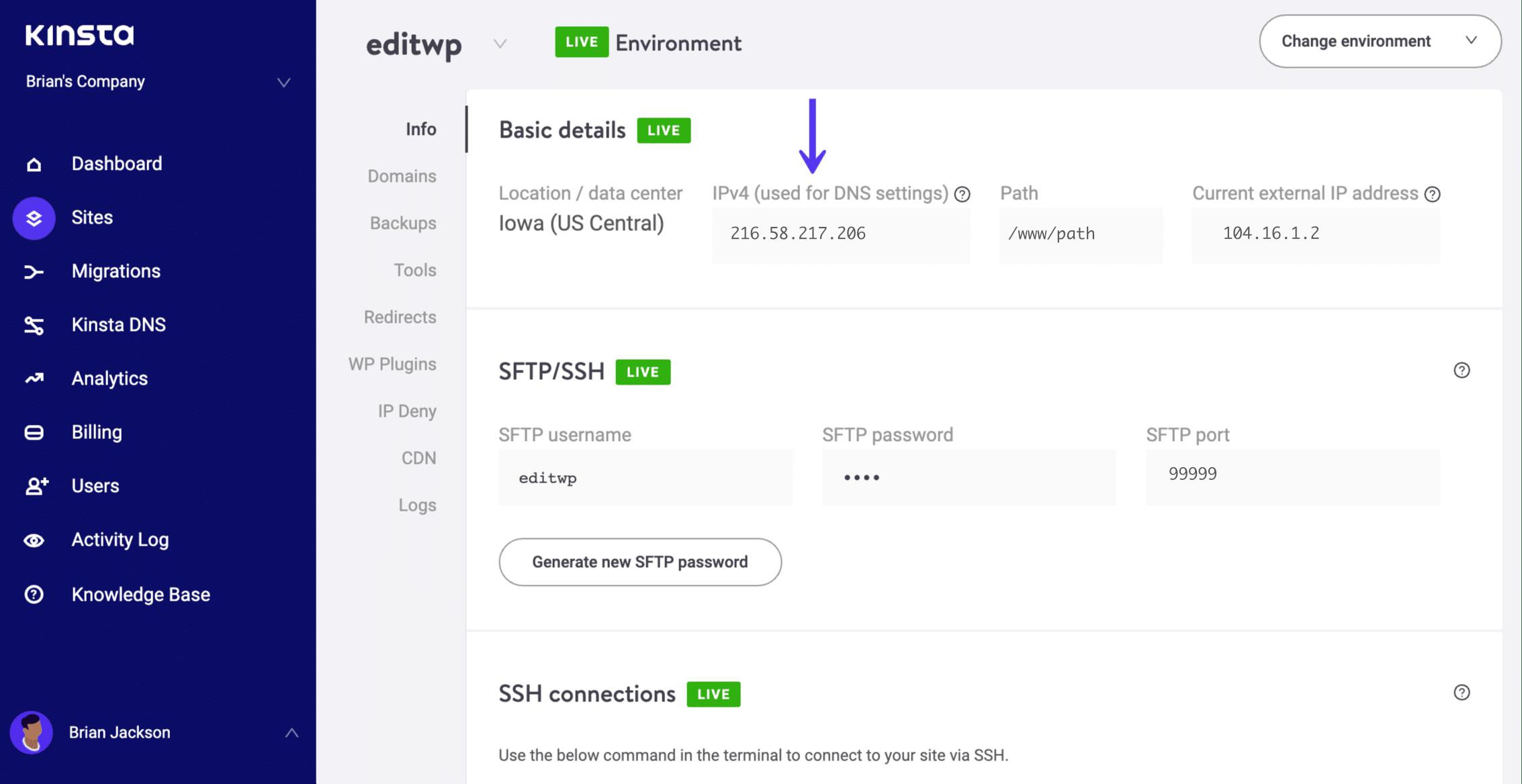 WordPress IPv4 Adresse
