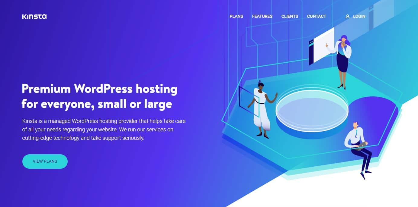 Kinsta Webseite