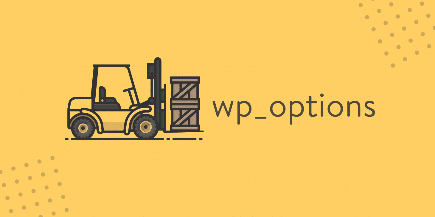 wp_options automatisch geladenen Daten