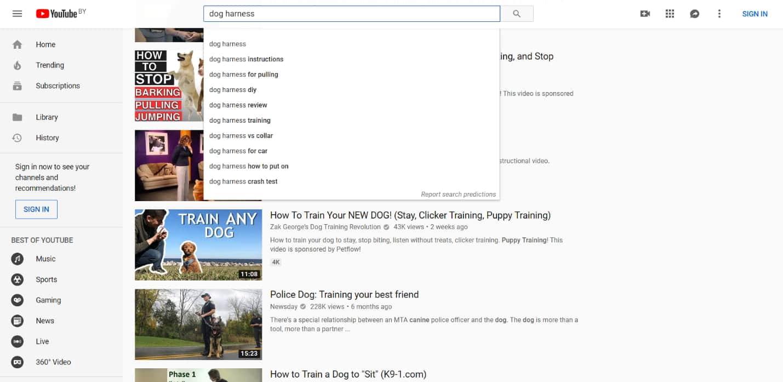 YouTube Autovervollständigung