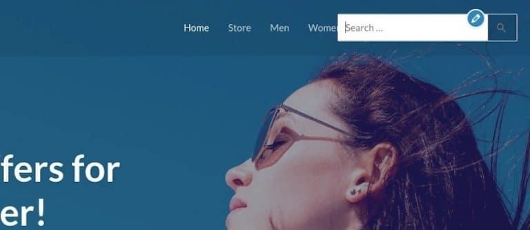 WordPress - Suchleiste mit Themeinstellungen hinzugefügt