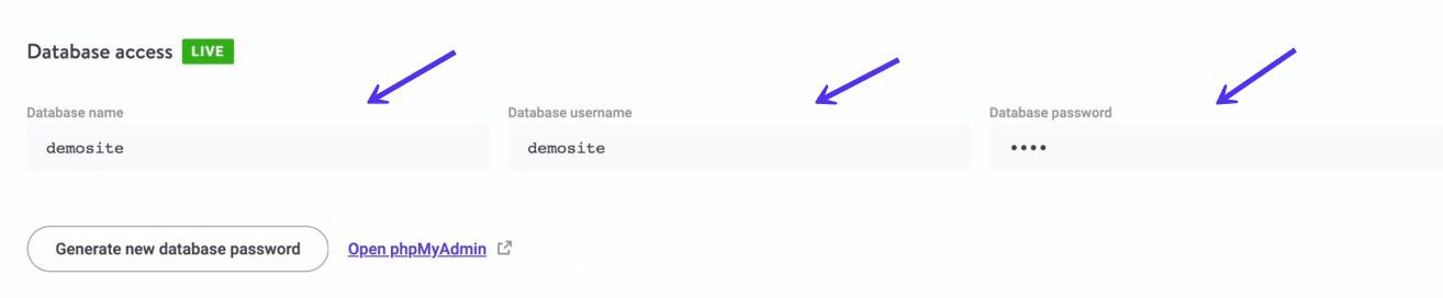 Datenbank-Zugang in MyKinsta