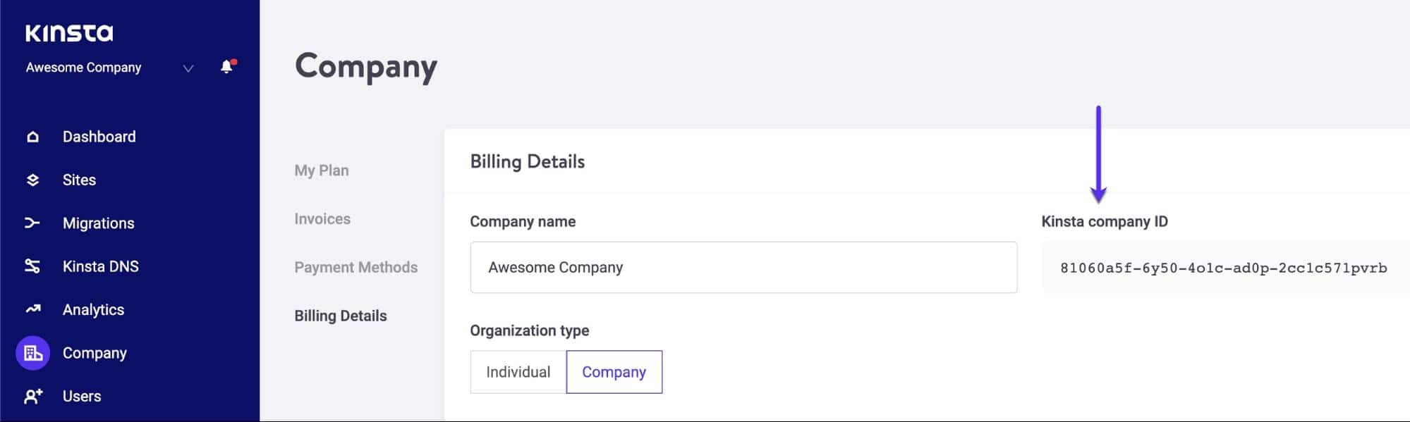 Kinsta-Firmen-ID im MyKinsta-Dashboard