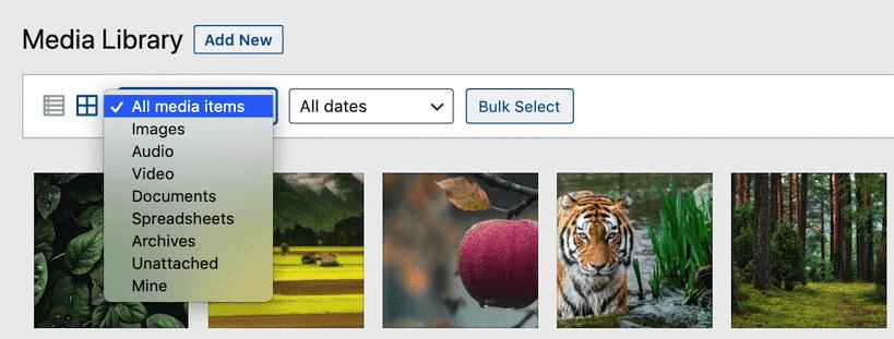 Filtern von WordPress Medienbibliothek Dateien