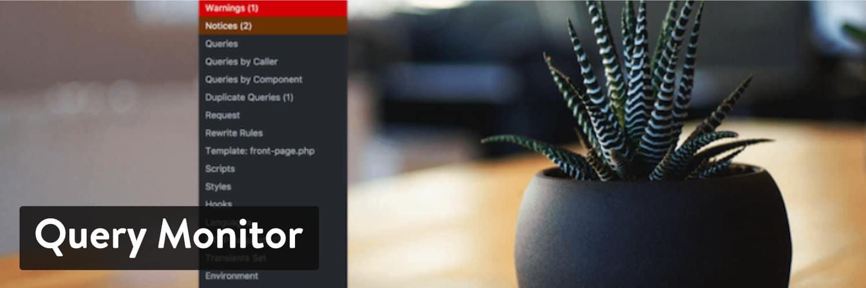 Query Monitor WordPress Plugin