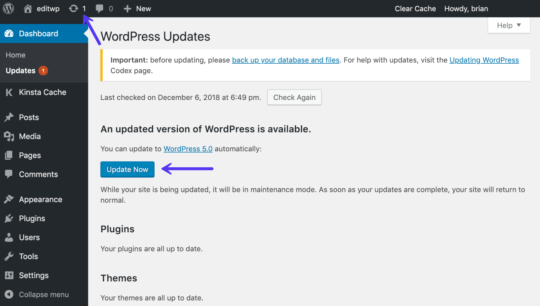 Opdater WordPress-kernen
