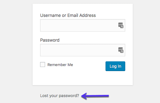 """""""Mistet din adgangskode"""" mulighed"""