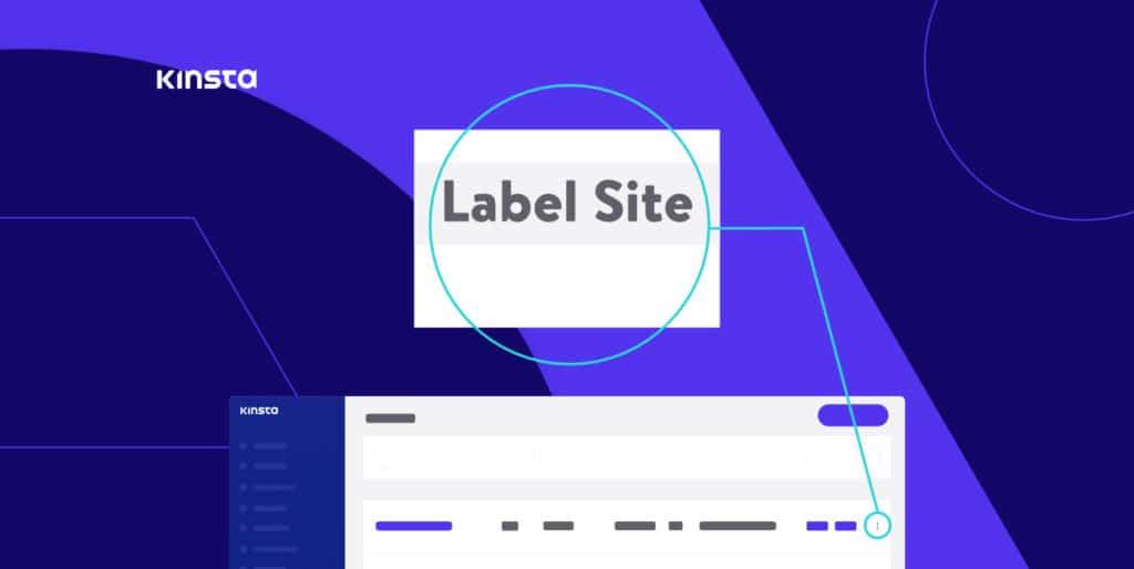 Sådan sættes labels på websteder i MyKinsta