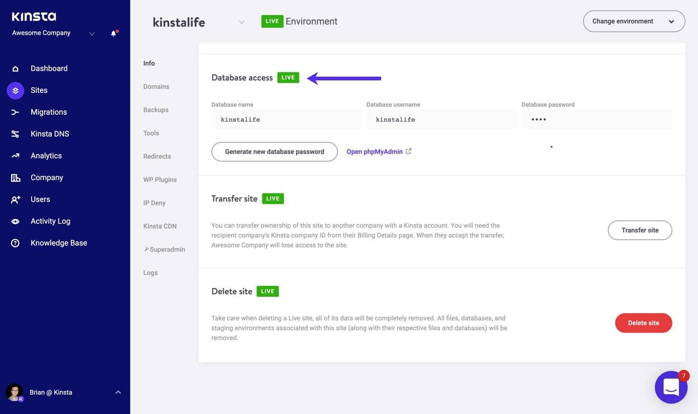 Oplysninger om adgang til database i MyKinsta.