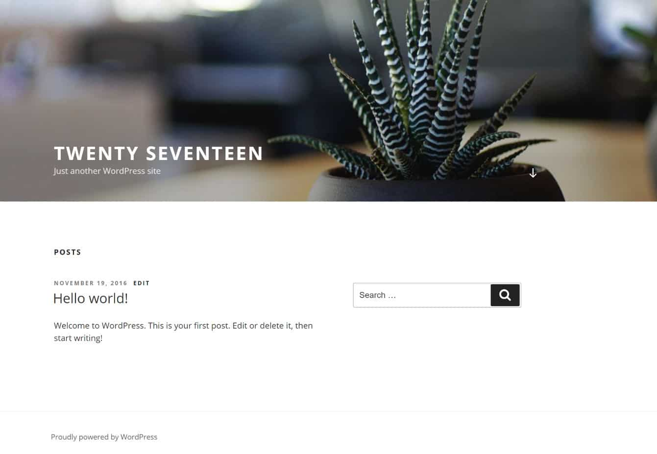 WordPress Twenty Seventeen tema