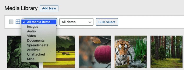Filtrando los archivos de la Biblioteca Multimedia de WordPress