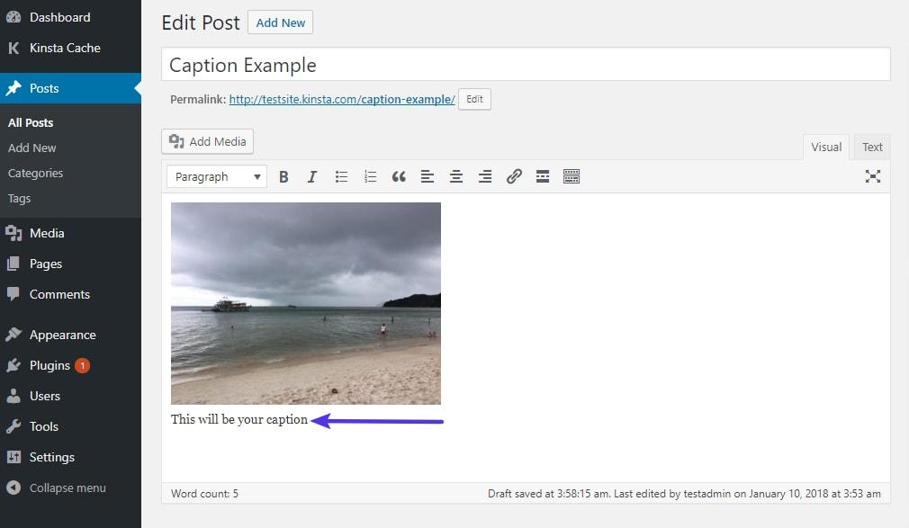 Un ejemplo de cómo se ve una leyenda de imagen en el editor de WordPress