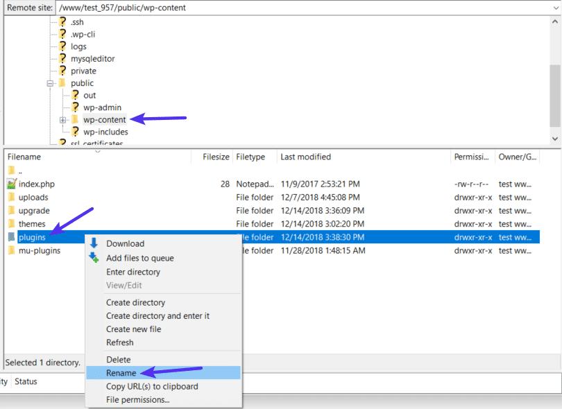 Cambie el nombre del folder de plugins