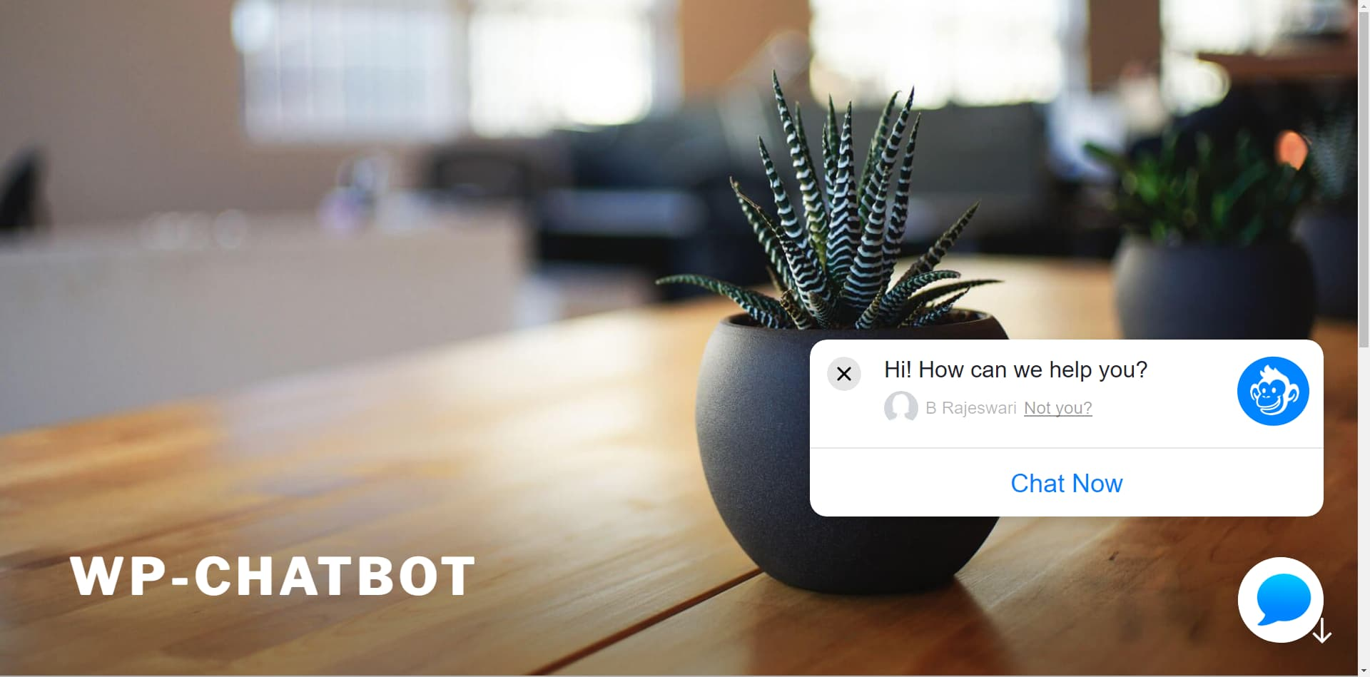 El plugin de WP-Chatbot