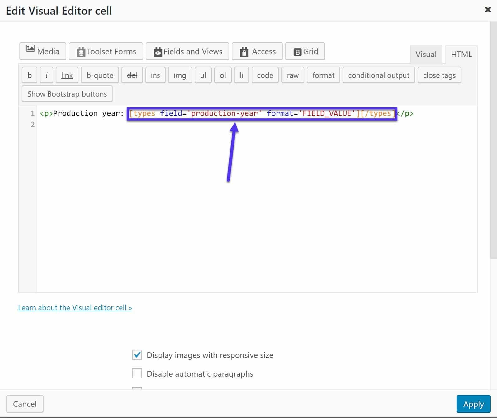 Año de producción siendo agregado con shortcode y un poco de HTML