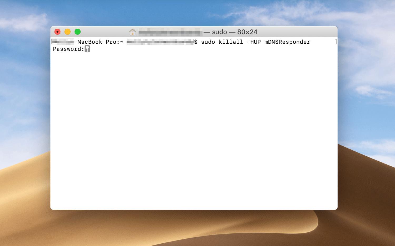 Introducir la contraseña del administrador para ejecutar el comando de purga de DNS