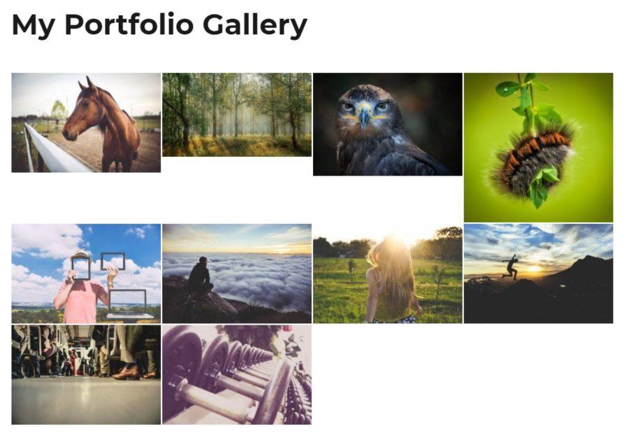 Responsive Lightbox & Gallery