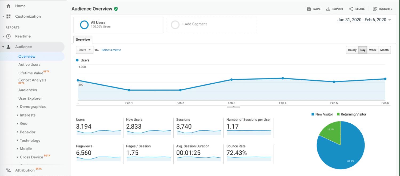 Visión general de la audiencia dentro de Google Analytics
