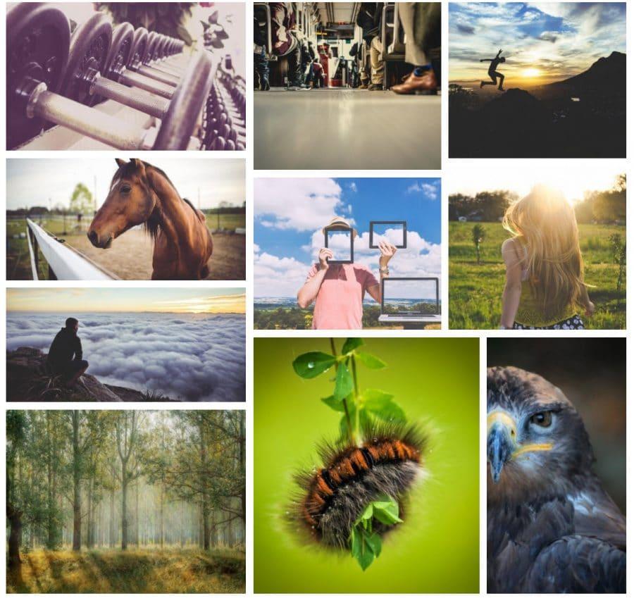 Plugin de la galería de fotos de Modula WordPress