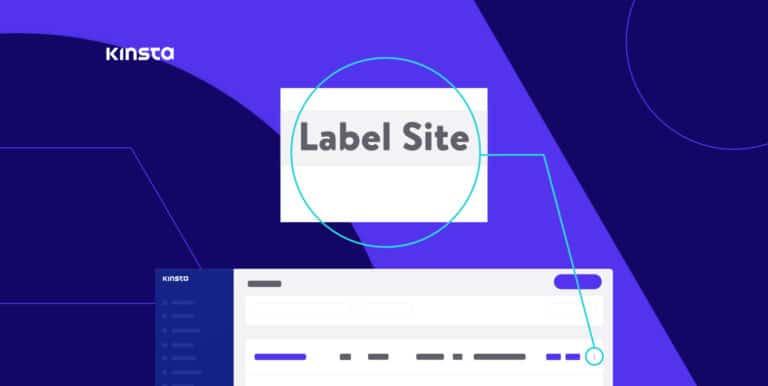 Etiquetar sitios en MyKinsta.