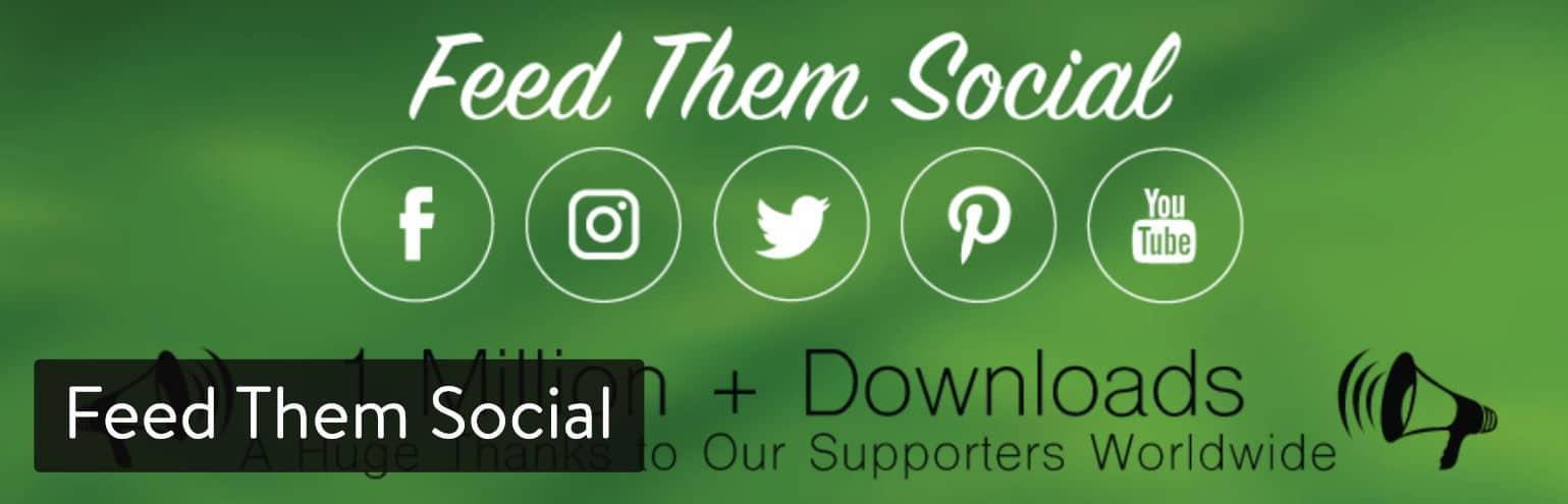 Extension WordPress Feed Them Social