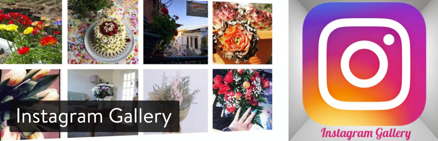 Extension WordPress Instagram Gallery
