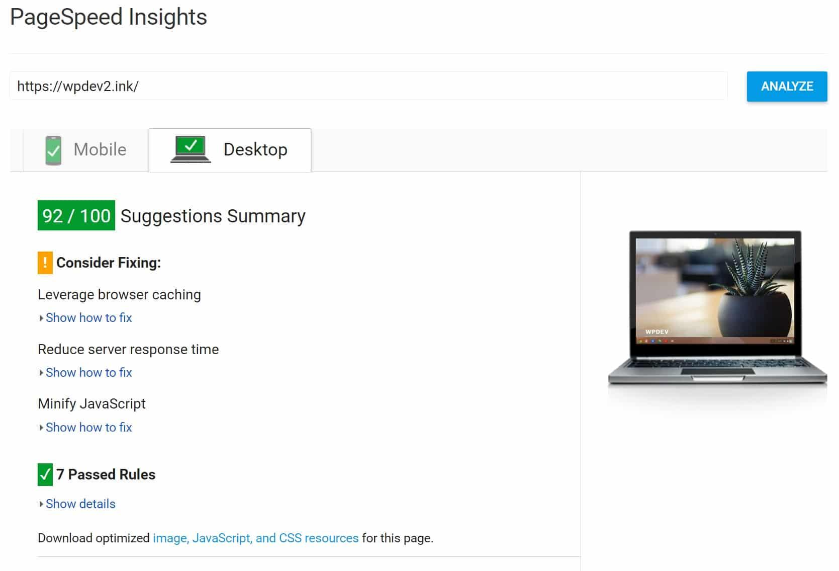 PageSpeed Insights après l'optimisation JS et CSS