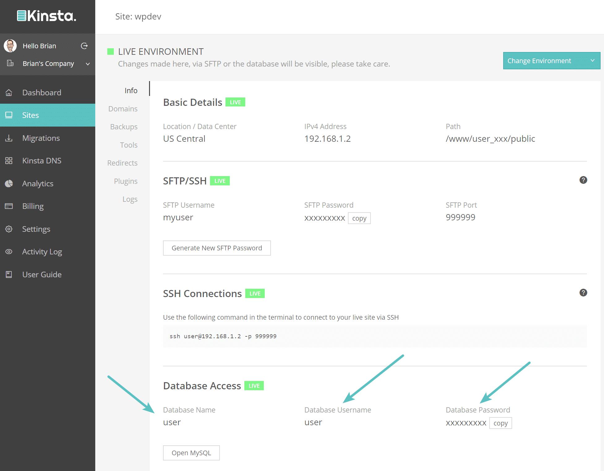 Identifiants de connexion à la base de données Kinsta