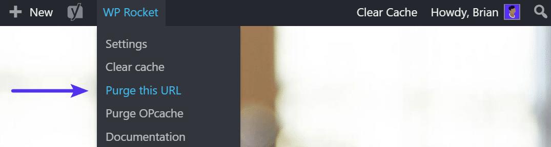 WP Rocket purge le cache de purge sur l'URL individuelle