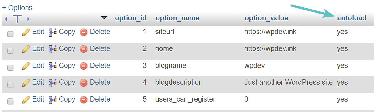 Table autoload wp_options