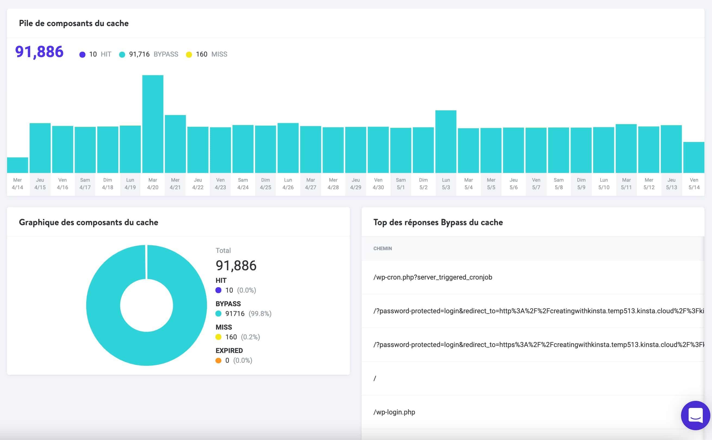 L'écran « Analyse du cache » dans MyKinsta