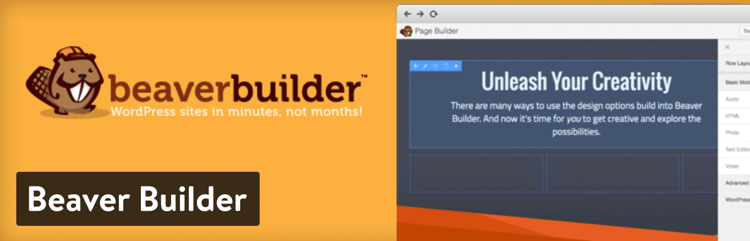 Plugin WordPress de Landing Page Beaver Builder