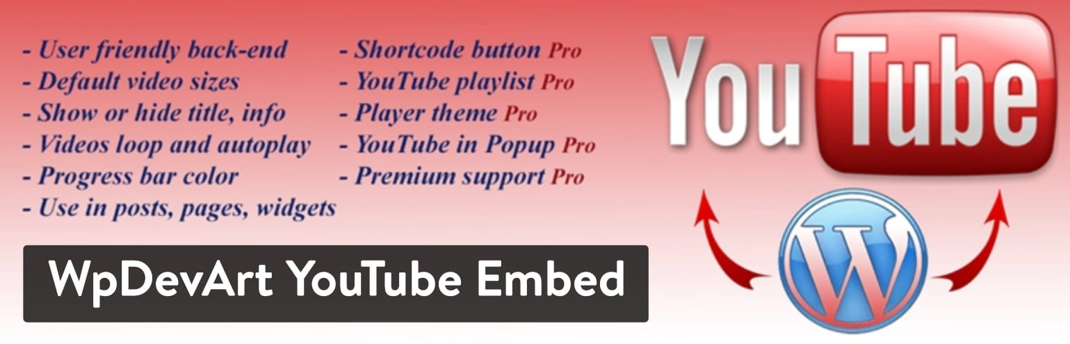 Extension WpDevArt YouTube Embed