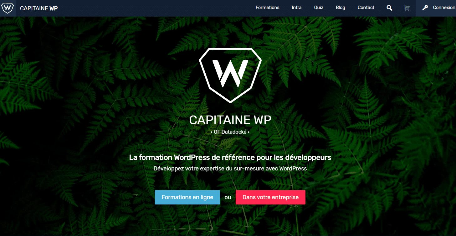 Capitaine WP