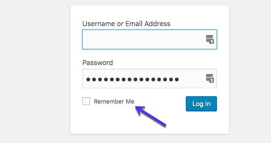 L'option «Se souvenir de moi» sur le formulaire de connexion WordPress