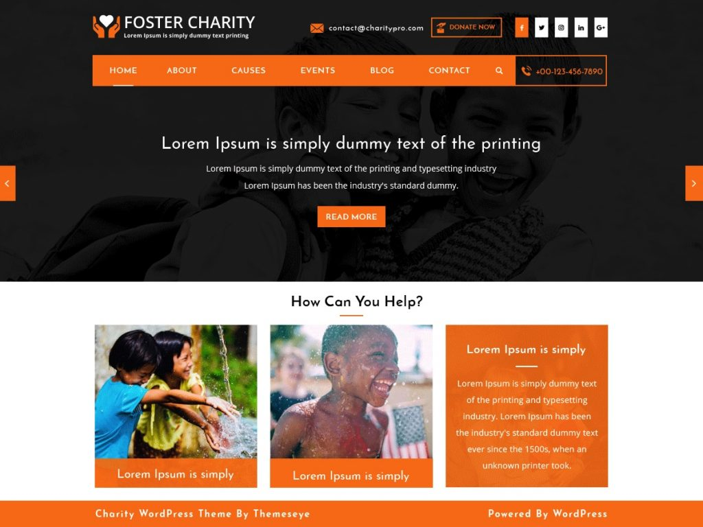 Thème Foster Charity