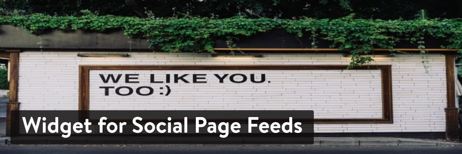 Extension WordPress Widget for Social Page Feeds