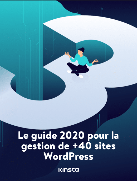 Le Guide 2020 pour la Gestion de +40 Sites Web WordPress