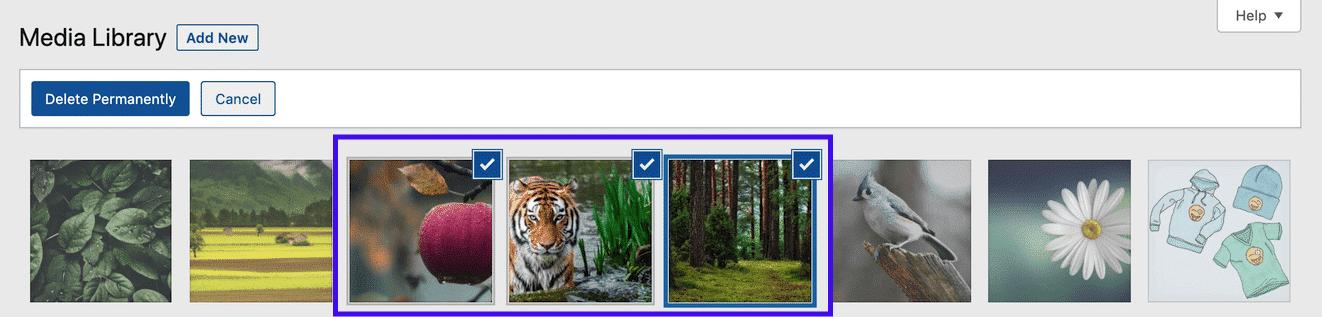 Option de sélection en masse dans la bibliothèque de médias de WordPress