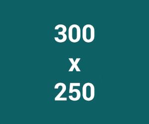 Exemple de bannière publicitaire 300 x 250