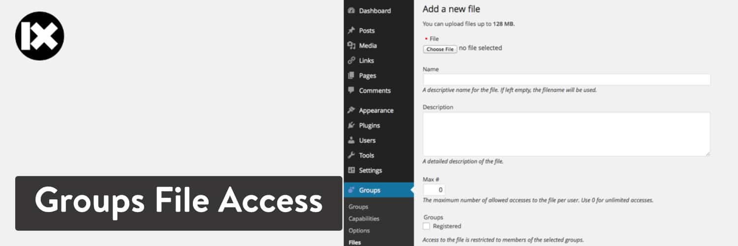 Extension WordPress Group File Access