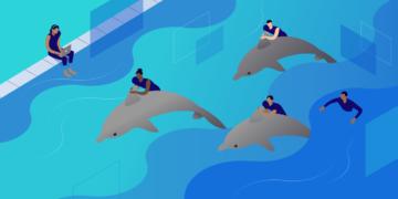 Comment configurer MySQL Community Server
