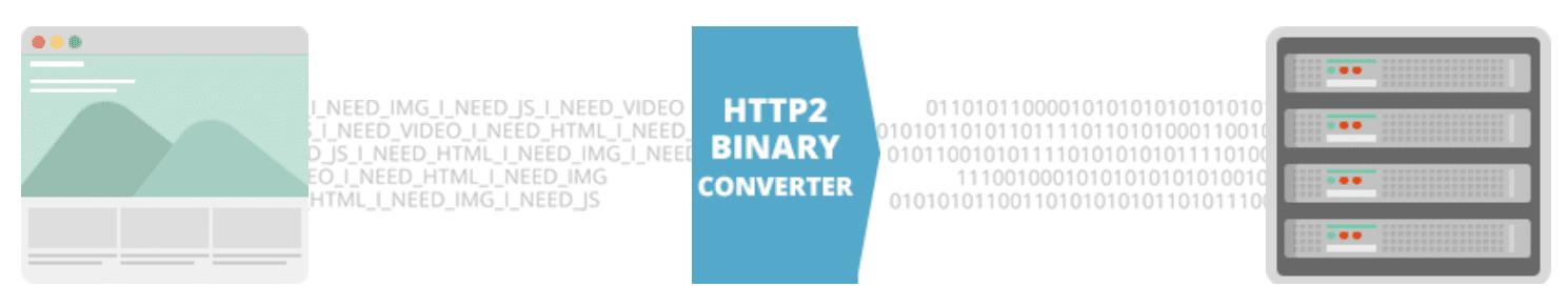 Protocolli binari