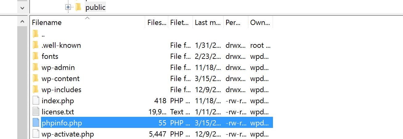 Upload del file phpinfo.php